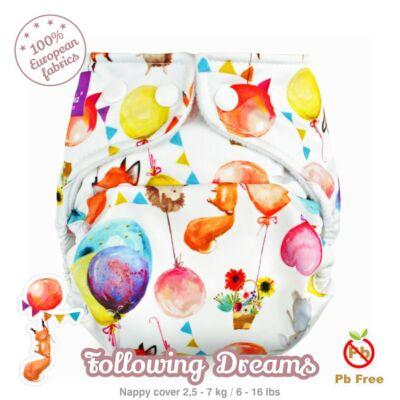 Following Dreams